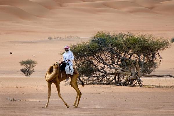 Oman - Wüstenparadies am Persischen Golf