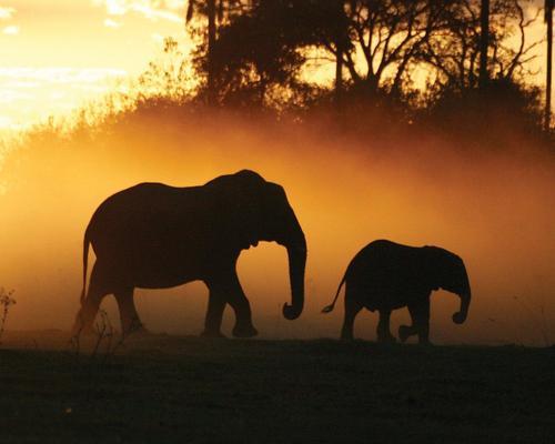 """Rundreise """"Ungezähmtes Namibia"""" & Badeverlängerung auf Mauritius"""