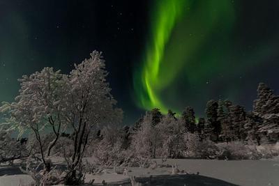 Weihnachtsfeeling und Nordlichter in Finnland & Lappland