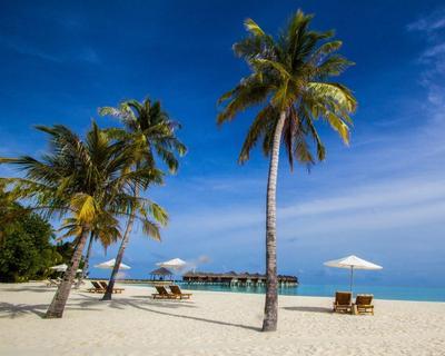 Maldív-szigetek: repülőjegy és szállás