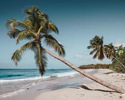 Martinique: 9 éjszaka 3 csillagos szállással és repjeggyel