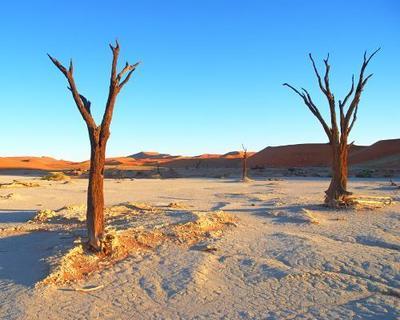 """Selbstfahrer-Rundreise """"Südliche Höhepunkte Namibias"""" & Abenteuer """"Krüger Nationalpark"""""""