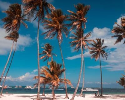 Desde Madrid. Nueva York 4 noches AD + Punta Cana 4 noches TI con todos los traslados incluidos