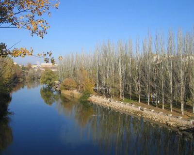 Routing por la Ribera del Duero, siguiendo el origen del Vino.