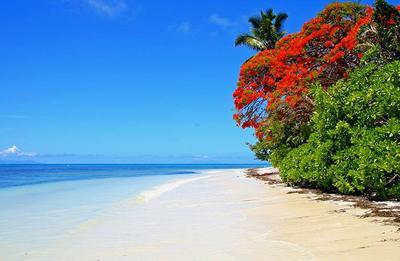 CCC 6 Days. Seychelles 4* I Dubai 4*