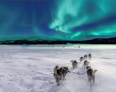Winterliches Finnland: Helsinki & Lappland inkl. Husky-Schlittenfahrt und Nordlichter