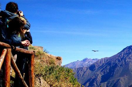 Excursión de día completo por el Cañón del Colca, todo incluido.