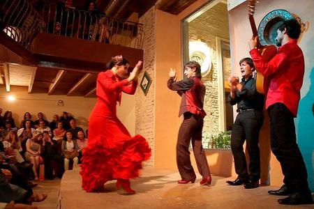Entreebewijs voor flamencoshow in Casa de la Memoria