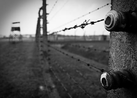 Auschwitz-Birkenau Museum und Gedenkstätte - Tour von Krakau aus