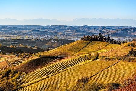 Radda in Chianti: tour di degustazione con pranzo al Castello