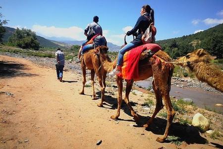 Excursion d'une journée dans les montagnes de l'Atlas au départ de Marrakech, dans les 3 vallées et les villages berbères et à dos de chameau