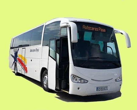Bus turístico ruta amarilla: La Savina - Illetes